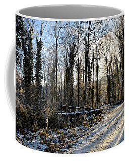 Coffee Mug featuring the photograph Cold Morning by Felicia Tica