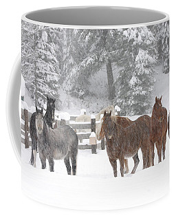 Cold Ponnies Coffee Mug