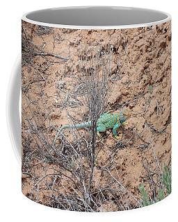 Collared Lizard Coffee Mug