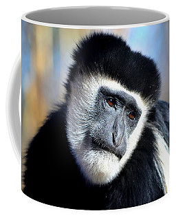 Coffee Mug featuring the photograph Colobus Contemplation by Deena Stoddard