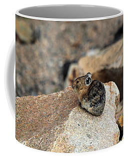 Colorado Pika Coffee Mug