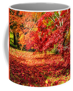 Colorful Fall Leaves On Japanese Maple Trees Coffee Mug