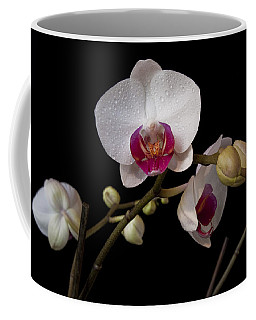 Colorful Moth Orchid Coffee Mug