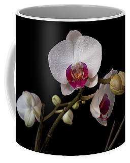 Colorful Moth Orchid Coffee Mug by Ron White
