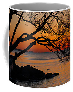 Colorful Quiet Sunrise On Lake Ontario In Toronto Coffee Mug by Georgia Mizuleva