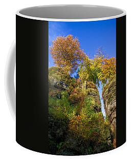 Colorful Trees In The Elbe Sandstone Mountains Coffee Mug