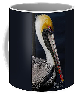 Colors Of A Pelican Coffee Mug by Quinn Sedam
