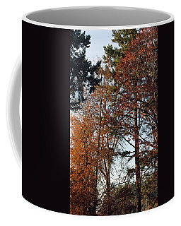 Colors Of Autumn Coffee Mug by Tikvah's Hope