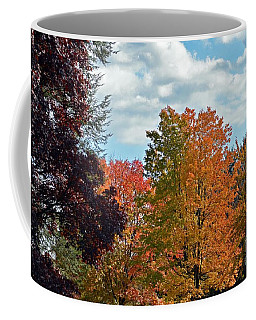 Coffee Mug featuring the photograph Colors Of Fall by Judy Wolinsky