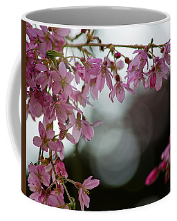 Coffee Mug featuring the photograph Colors Of Spring - Cherry Blossoms by Jordan Blackstone
