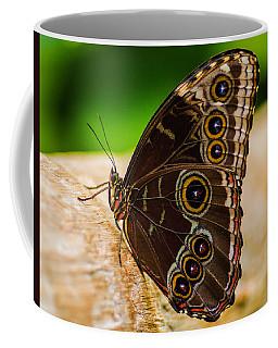 Colour Display Coffee Mug