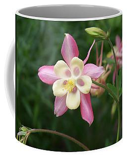 Coffee Mug featuring the photograph Columbine by Kathryn Meyer