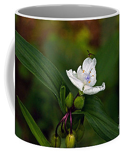 Come Into My Parlor Said The Spiderwort To The Hoverfly Coffee Mug