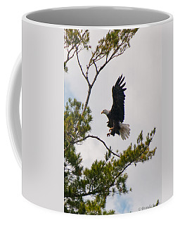 Coming In For A Landing Coffee Mug