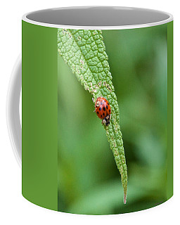 Coming To The End Of The Leaf Coffee Mug