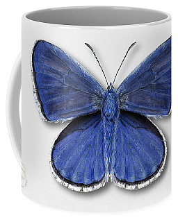 Common Blue Butterfly - Polyommatus Icarus Butterfly Naturalistic Painting - Nettersheim Eifel Coffee Mug