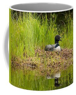 Common Loon Nesting Coffee Mug