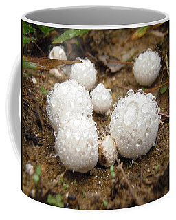 Common Puffball Dewdrop Harvest Coffee Mug