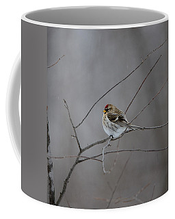 Coffee Mug featuring the photograph Common Redpoll by David Porteus