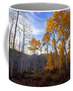Comparison Coffee Mug