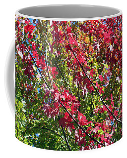 Coffee Mug featuring the photograph Complimentary Colors by Debbie Hart