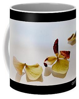 Coffee Mug featuring the photograph Composition by Marija Djedovic