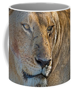 Concentration Coffee Mug