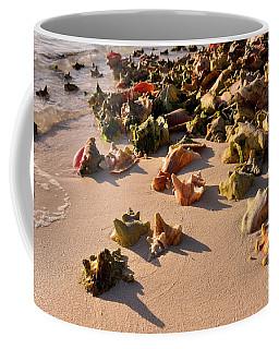Conch Collection Coffee Mug