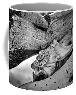 Conch Shell One Coffee Mug