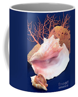 Conch Still Life Coffee Mug
