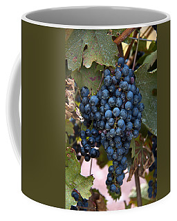 Concord Grapes Coffee Mug