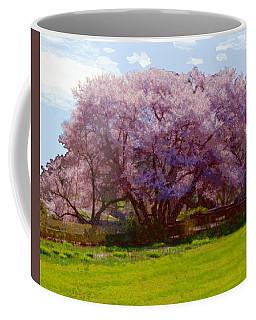 Concord Spring Coffee Mug