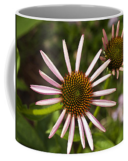 Cone Flower - 1 Coffee Mug