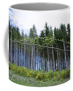 Coniferous Forest Coffee Mug
