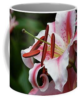 Consider The Lily Coffee Mug