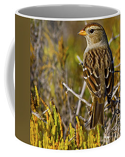 Coffee Mug featuring the photograph Contemplating The Day by Gary Holmes