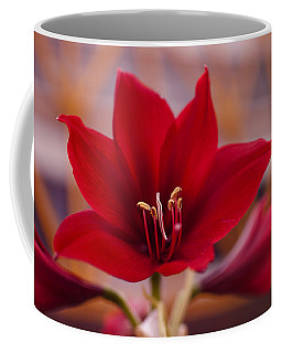 Coffee Mug featuring the photograph Content Tropics by Miguel Winterpacht