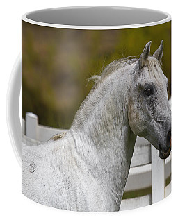 Coffee Mug featuring the photograph Conversano Mima D2724 by Wes and Dotty Weber