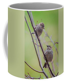 Coffee Mug featuring the photograph Conversation Of The Day by Steven Santamour