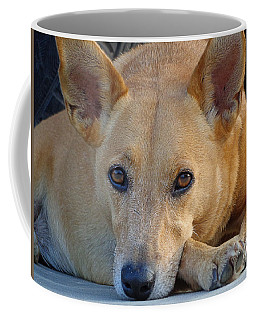 Cookie Chillin'  Coffee Mug