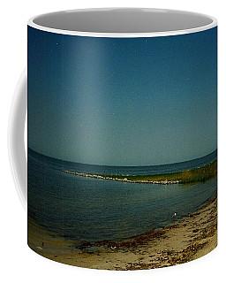 Cool Day For A Swim Coffee Mug by Amazing Photographs AKA Christian Wilson