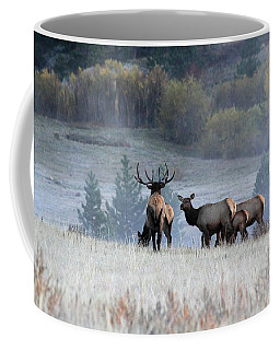 Cool Misty Morning Coffee Mug