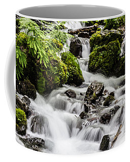 Coffee Mug featuring the photograph Cool Waters by Suzanne Luft
