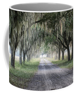 Coosaw Fog Avenue Of Oaks Coffee Mug