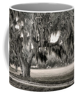 Coosaw - Split Oak Coffee Mug