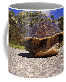 Cooter Turtle 001 Coffee Mug
