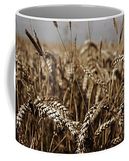 Coffee Mug featuring the photograph Corn Field by Vicki Spindler