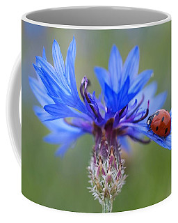 Coffee Mug featuring the photograph Cornflower Ladybug Siebenpunkt Blue Red Flower by Paul Fearn