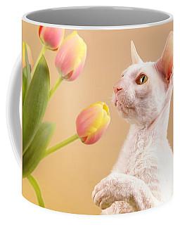 Cornish Rex Cat Coffee Mug