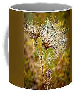 Coffee Mug featuring the photograph Cotten Grass by Jim Thompson